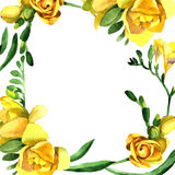 Wildflower fresia flower frame in a watercolor style. Stock Photo