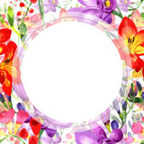 Wildflower fresia flower frame in a watercolor style. Stock Images