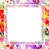 Wildflower fresia flower frame in a watercolor style. Royalty Free Stock Photos