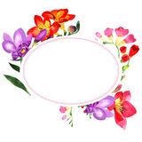 Wildflower fresia flower wreath in a watercolor style. Stock Photo