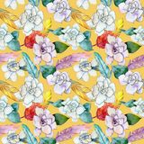 Wildflower gardenia flower pattern in a watercolor style. Stock Photos