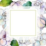 Wildflower gerbera flower frame in a watercolor style. Royalty Free Stock Image
