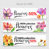 Wildflower hibiscus flower banner in a watercolor style isolated. Stock Photos