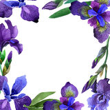 Wildflower iris flower frame in a watercolor style isolated. Stock Images