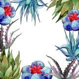 Wildflower kaktusa rama w akwarela stylu Obraz Royalty Free