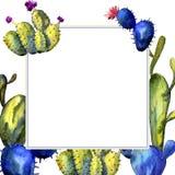 Wildflower kaktusa rama w akwarela stylu Zdjęcia Royalty Free