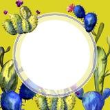 Wildflower kaktusa rama w akwarela stylu Zdjęcie Stock