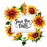 Wildflower kwiatu słonecznikowa rama w akwarela stylu Zdjęcie Stock