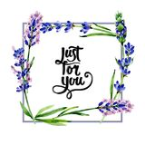 Wildflower lavender flower frame in a watercolor style. Stock Photo