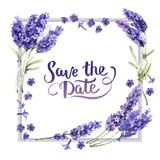 Wildflower lavender flower frame in a watercolor style isolated vector illustration