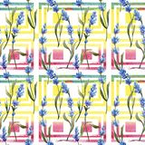 Wildflower lavender flower pattern in a watercolor style. Full name of the plant: lavender. Aquarelle wild flower for background, texture, wrapper pattern Stock Photo