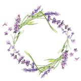 Wildflower lavender flower wreath in a watercolor style isolated. stock illustration