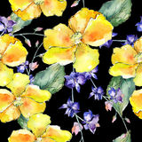 Wildflower orchid flower pattern in a watercolor style. Royalty Free Stock Photography