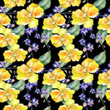 Wildflower orchid flower pattern in a watercolor style. Stock Photo