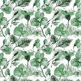 Wildflower orchid flower pattern in a watercolor style. Royalty Free Stock Photos