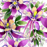 Wildflower orchid flower pattern in a watercolor style isolated. Stock Photos