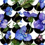 Wildflower orchid flower pattern in a watercolor style. Royalty Free Stock Images