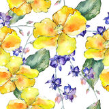 Wildflower orchid flower pattern in a watercolor style. Stock Images