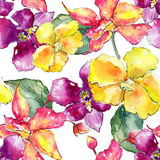 Wildflower orchid flower pattern in a watercolor style. Stock Image