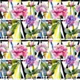 Wildflower peoni kwiatu wzór w akwarela stylu Zdjęcie Stock