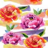 Wildflower peoni menchii kwiatu wzór w akwarela stylu Obrazy Stock