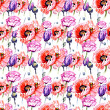 Wildflower poppies flower pattern in a watercolor style. Full name of the plant: poppies. Aquarelle wild flower for background, texture, wrapper pattern, frame Stock Photos