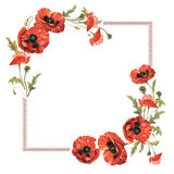 Wildflower poppy flower frame in a watercolor style isolated. Stock Photography