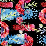 Wildflower poppy flower pattern in a watercolor style. Royalty Free Stock Image