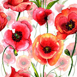 Wildflower poppy flower pattern in a watercolor style isolated. Royalty Free Stock Photography
