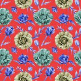 Wildflower poppy flower pattern in a watercolor style. Stock Images