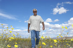 Wildflower Retirement. Casual senior man walking in desert wildflowers Royalty Free Stock Images
