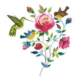 Wildflower rose flower with bird colibri  in a watercolor style isolated. Royalty Free Stock Image