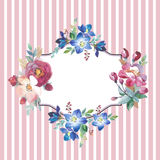Wildflower rose flower frame in a watercolor style isolated. Royalty Free Stock Images