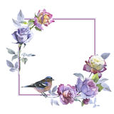 Wildflower rose flower frame in a watercolor style isolated. Stock Photos