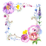 Wildflower rose flower frame in a watercolor style isolated Royalty Free Stock Photography