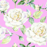 Wildflower rose flower pattern in a watercolor style. Stock Photo