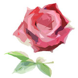 Wildflower rose flower in a vector style isolated. Full name of the plant: hulthemia. Vector wild flower for background, texture, wrapper pattern, frame or Royalty Free Stock Images
