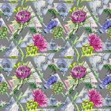 Wildflower thistle flower pattern in a watercolor style. Full name of the plant: thistle. Aquarelle wild flower for background, texture, wrapper pattern, frame Stock Photo