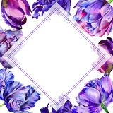 Wildflower tulip flower frame in a watercolor style. Stock Images