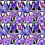 Wildflower tulip flower pattern in a watercolor style. Stock Photos