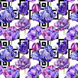 Wildflower tulip flower pattern in a watercolor style. Royalty Free Stock Images