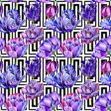 Wildflower tulip flower pattern in a watercolor style. Stock Photography