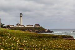 Wildflower und die Tauben-Punkt-Leuchtturm-Station stockfotografie
