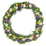 Wildflower Wreath Royalty Free Stock Photo