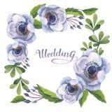 Wildfloweranemonen-Blumenrahmen in einer Aquarellart lokalisiert Stockbilder