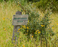Wildflowergebied Stock Fotografie