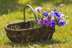 Wildflowers σε ένα καλάθι Στοκ Εικόνα
