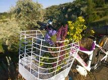 Wildflowers в корзине велосипеда Стоковые Фото