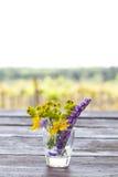 Wildflowers в стеклянной вазе Стоковое Изображение RF