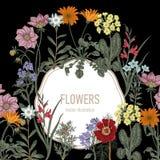 Wildflowers Иллюстрация вектора в типе год сбора винограда праздничная открытка Стоковые Изображения RF